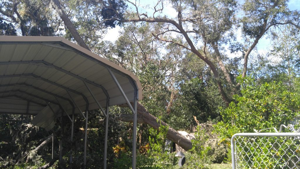 Emergency tree service for tree fall on garage