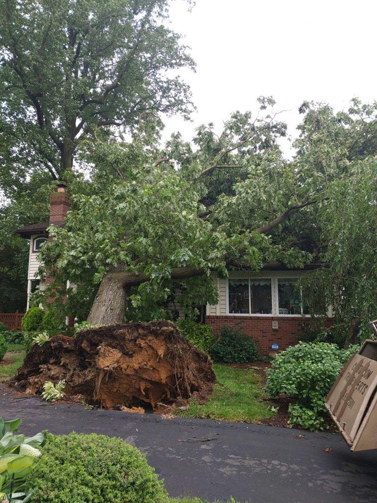 Tree fell on house in Churchville, MD